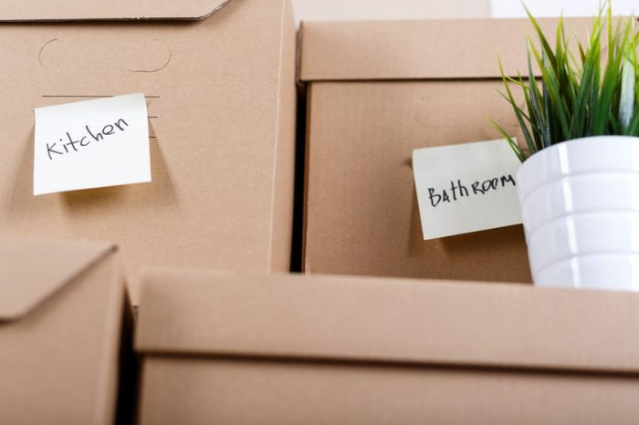 Thumbnail for Downsizing Your Home? Here Are Four Top Tips to Make It a Smooth Move.